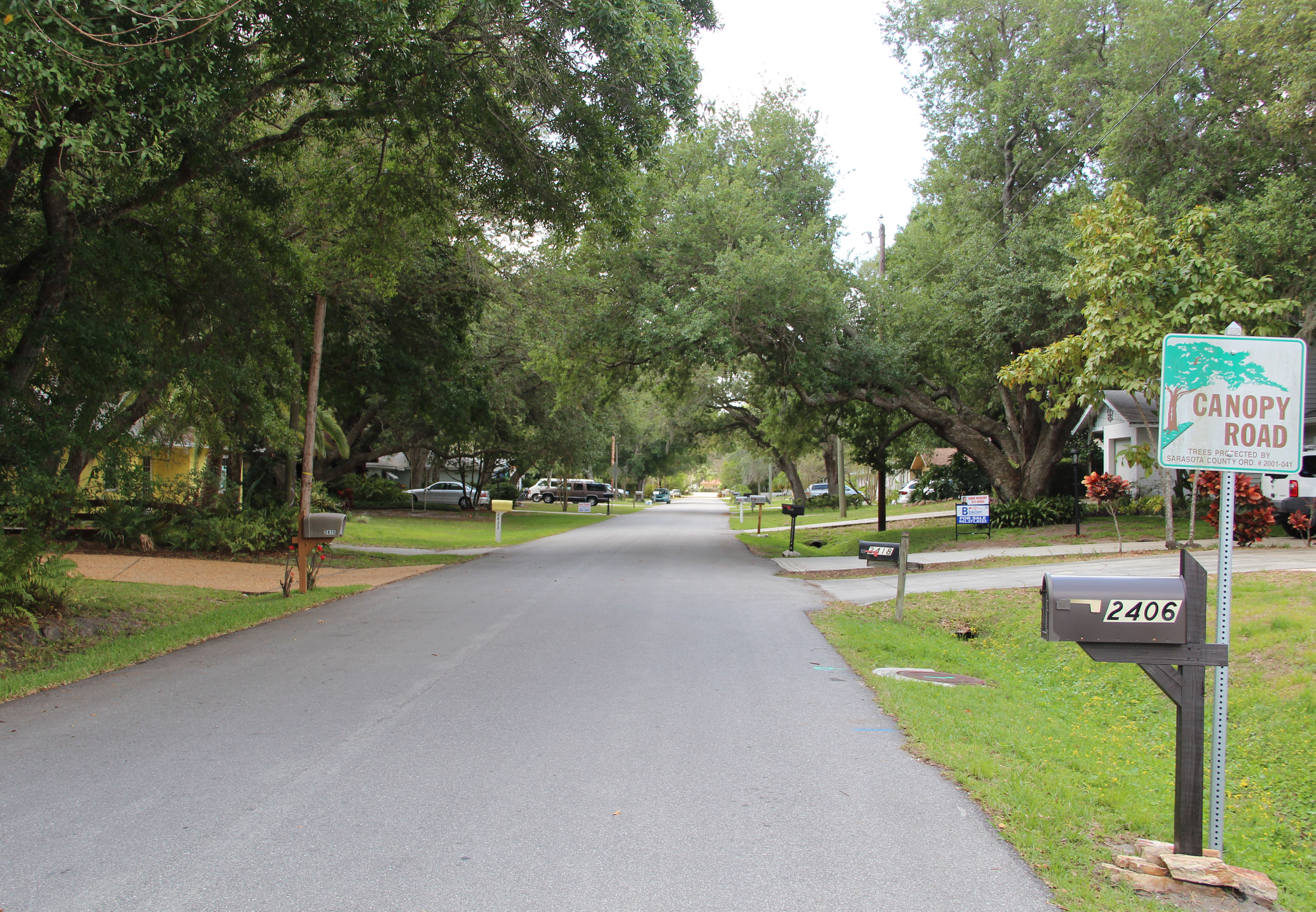 Canopy Roads are found in various parts of Sarasota County. News Leader archive & More county segments could be eligible for Canopy Road designation