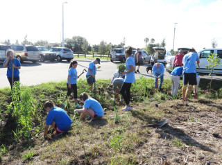 Volunteers add plants to a bioswale at the Celery Fields. Contributed photo