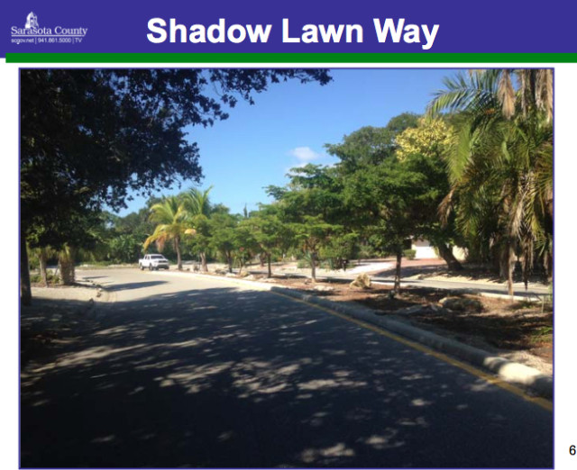 A staff photo shows the existing trees along Shadow Lawn Way. Image courtesy Sarasota County