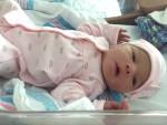 Elaenia Rose Drouin Jan. 11 2016