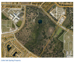Little Salt Spring is shown on an aerial map. Image courtesy Sarasota County