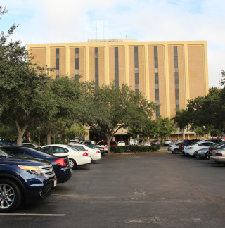 Trees are abundant in the parking lot for the County Administration Center. File photo