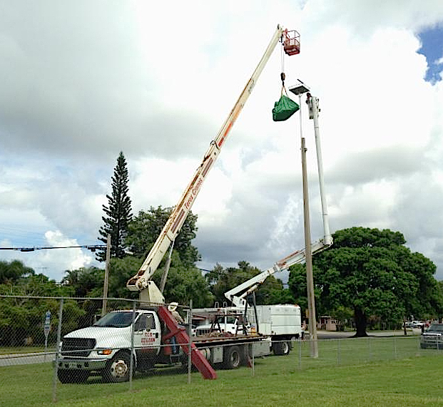 City workers use a crane to relocate the inactive nest. Photo courtesy City of Sarasota