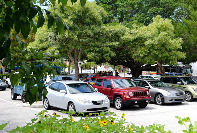 Homeless people gather under the shade trees in the City Hall parking lot in September 2013. File photo