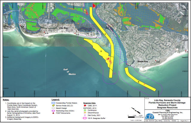 A graphic submitted by the U.S. Army Corps of Engineers to the FDEP documents seagrass in the project area. Image courtesy FDEP