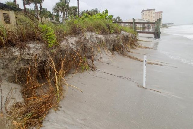 On June 6, erosion from Tropical Storm Colin was evident on Lido Key Beach. The white marker denotes the boundary of the Ritz Carlton property. Photo courtesy of Laura Bryg