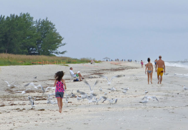 A child follows well behind the adults on the beach. Photo by Fran Palmeri
