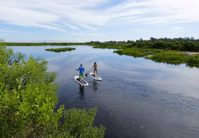 Kayakers take in the serenity of Robinson Preserve in Manatee County. Photo by Fran Palmeri