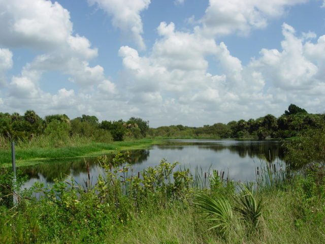 Deer Prairie Creek Preserve is in South County. Photo courtesy Sarasota County