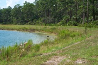 The Pinelands Reserve is also in South County. Photo courtesy Sarasota County