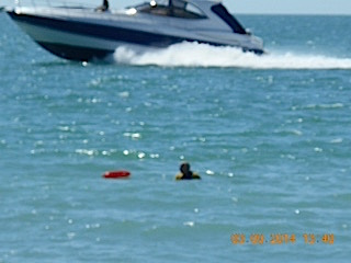 A boat speeds past a swimmer at Turtle Beach. Photo contributed by Andrew Terry