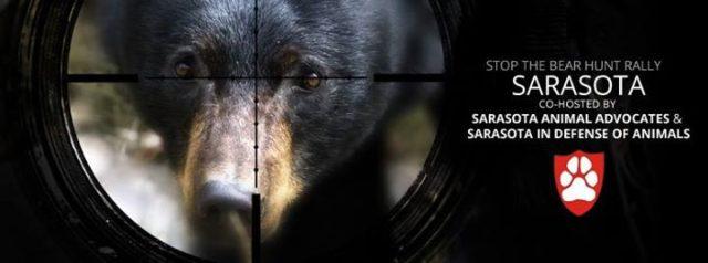 Image courtesy Sarasota in Defense of Animals