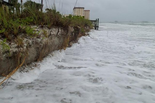 Laura Bryg, vice president of the Lido Key Residents Association, took this photo of Lido Key Beach erosion during Tropical Storm Colin's passage by the coast in early June. Image courtesy Laura Bryg