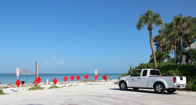 A truck is parked at Beach Access 2 on Aug. 2. Rachel Hackney photo