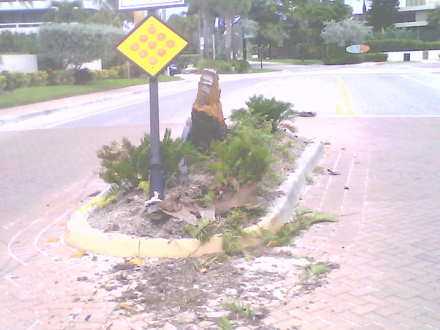 Damage was clearly visible on Aug. 23 in the island near the south end of Ocean Boulevard. Photo courtesy Michael Shay
