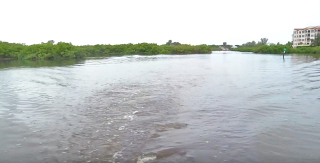 The Phillippi Creek watershed is the focus of a Sarasota County YouTube video. Image from the video