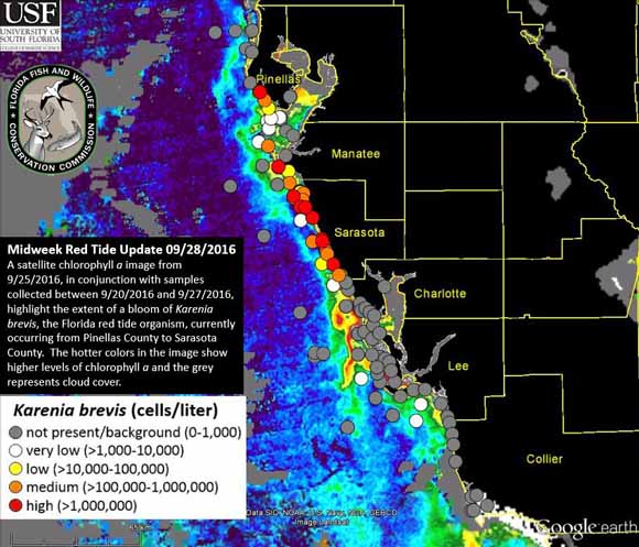 The Florida Fish and Wildlife Conservation Commission provided this data about the red tide event on Sept. 28. Image courtesy FWC