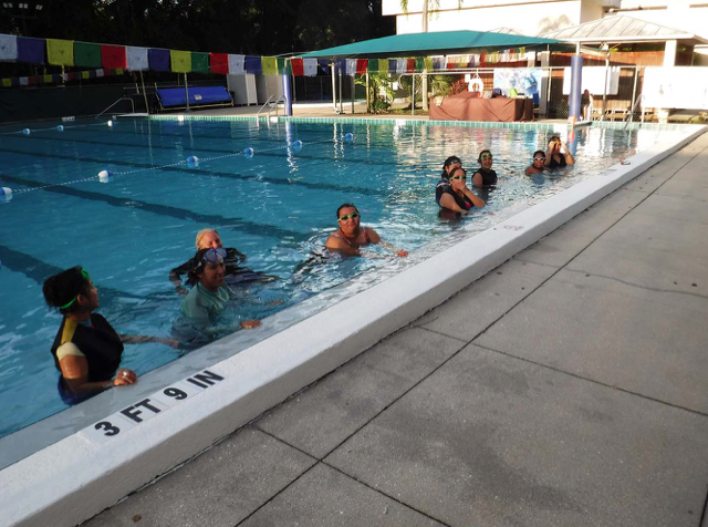 Public Swimming Opportunity Provided By Miracle Swimming For Adults While Arlington Park Pools