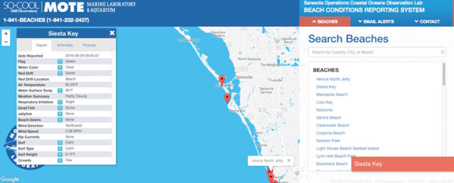 Mote Marine Laboratory offers beach reports online. Image from the website on the morning of Sept. 29, 2016