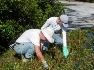 Volunteers are being sought for initiative at Minecraft Park. Photo courtesy Sarasota County