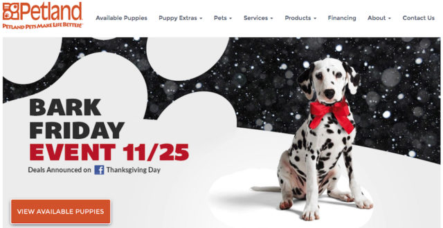 The store's website featured this banner on Nov. 17. Image from the Petland Sarasota website